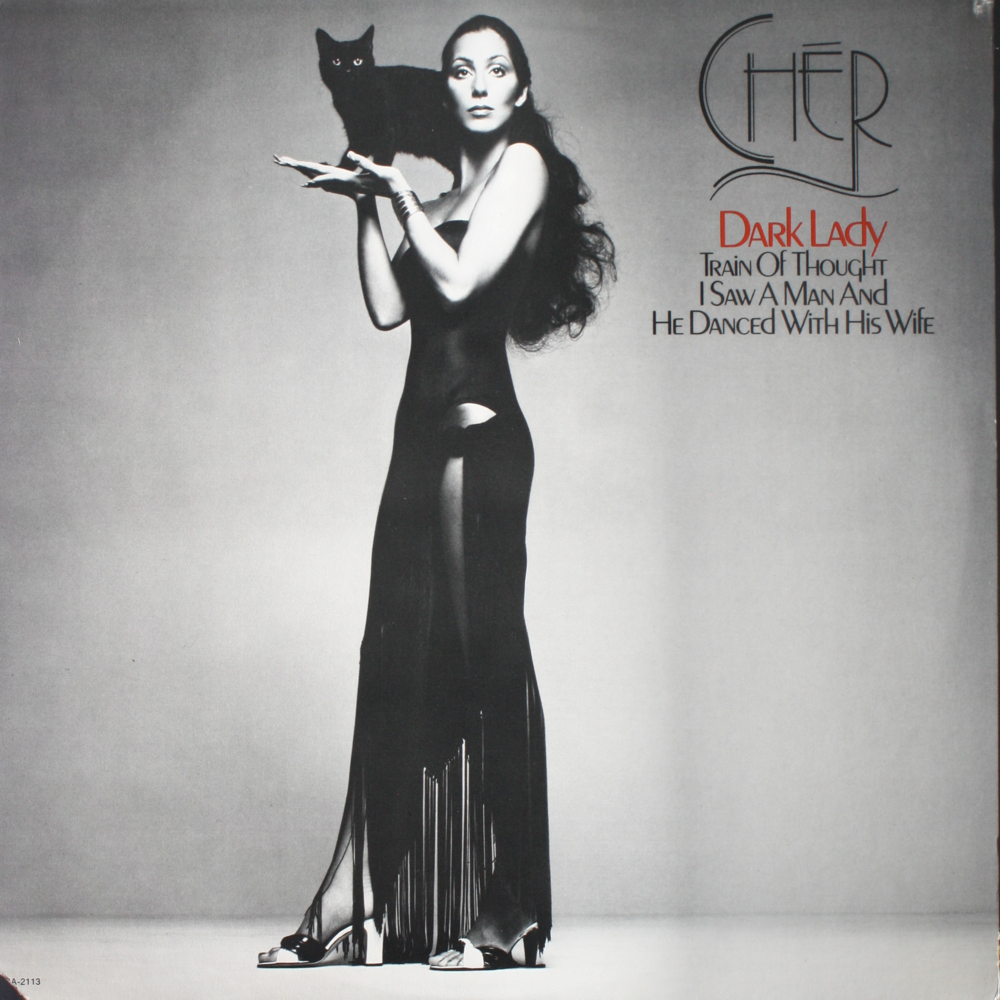 Cher Dark Lady Records Lps Vinyl And Cds Musicstack